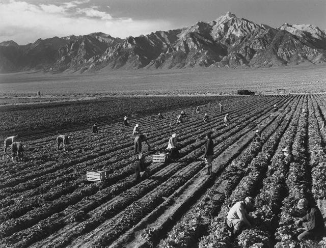 Il Manzanar relocated Center in USA04