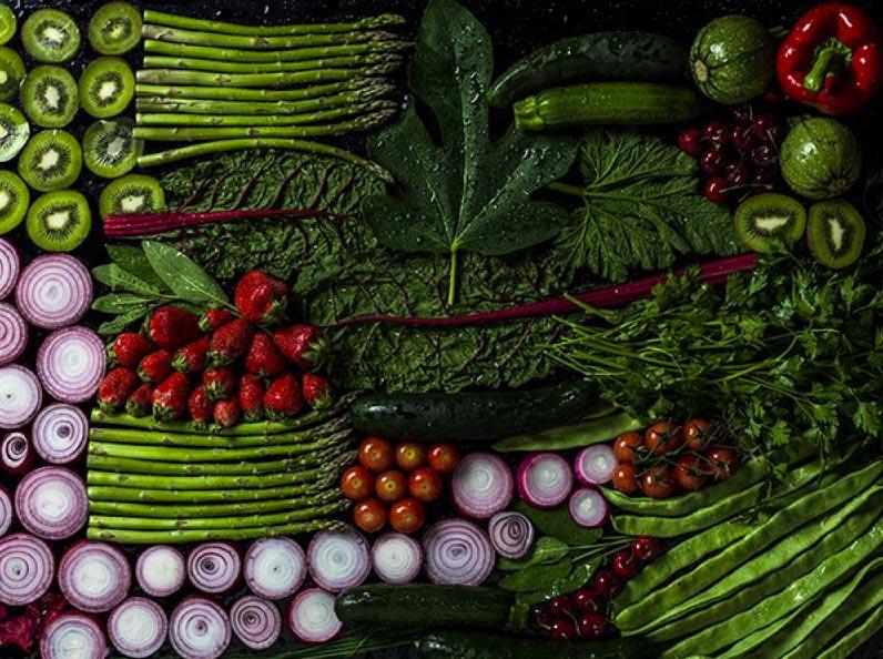 foodgraphia-15