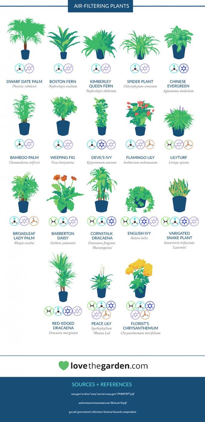 lista-piante-nasa