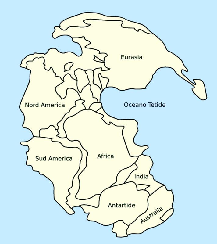 Cartina Politica Africa In Italiano.Una Mappa Mostra La Posizione Degli Stati Nazionali Nel Supercontinente Pangea Vanilla Magazine