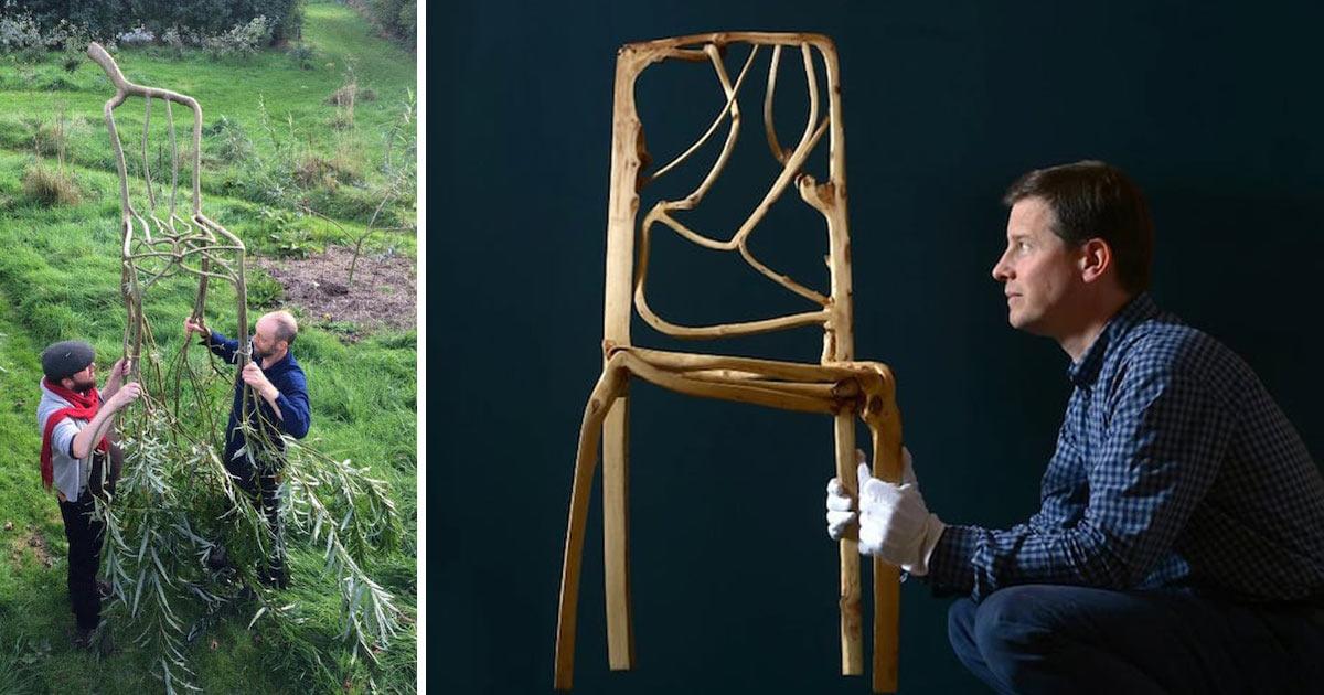 Designer coltiva alberi gi a forma di arredamento d for Sedie design 3d